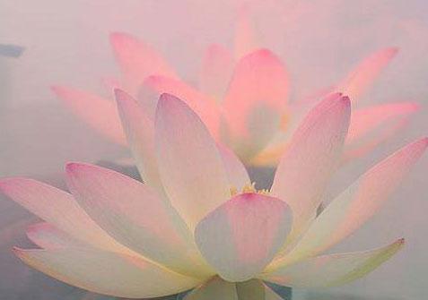 Tantra Yoga Blog